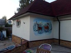Роспись стен в интерьере, на фасаде дома, роспись мебели и аксессуаров, создание картин на заказ