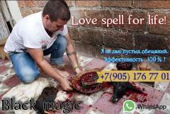 Приворот в германии. Гадание онлайн в германии. Маг и магические услуги