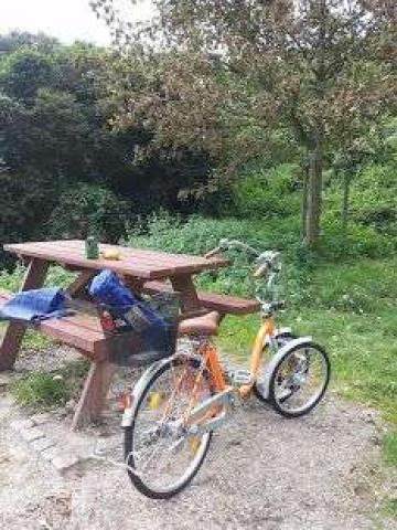 3х колесный велосипед