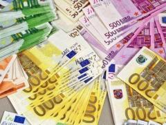 Ищу партнера для реализации с/х продукции на территории европы